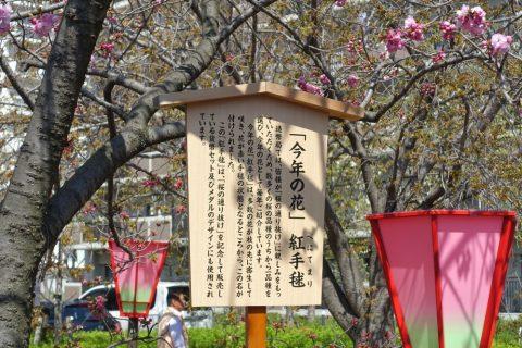 sakura-no-toorinuke/紅手毬