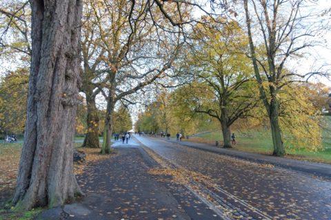 greenwich-parkの道