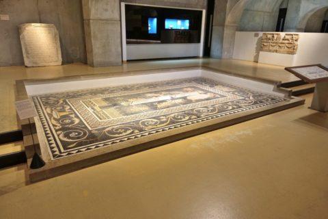lugdunum-musee-et-theatres-romains/モザイク画