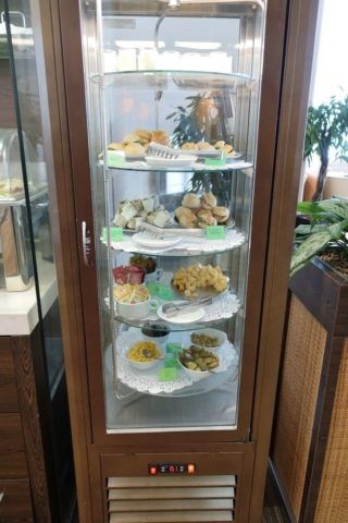 moscow-airport-business-lounge/ガラスケース