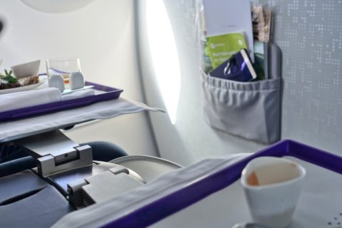 s7-airlines-businessclass/インボラの意義