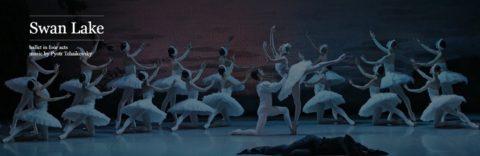 Mikhailovsky-Theatre/白鳥湖