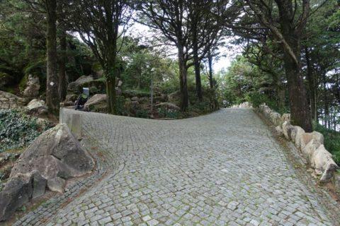 park-of-pena/分かれ道