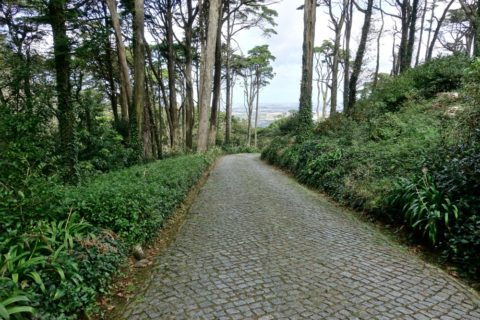 park-of-pena/歩道