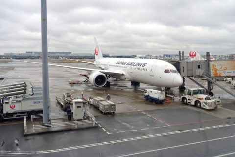 JAL国内線B787/大阪