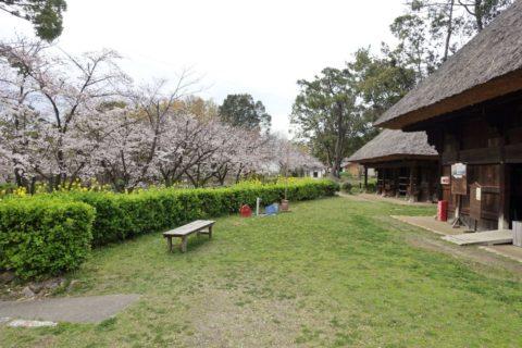 日本民族集落博物館/日向椎葉の庭