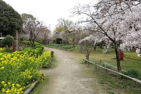 日本民族集落博物館/バリヤフリー