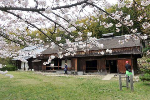 日本民族集落博物館/営業時間