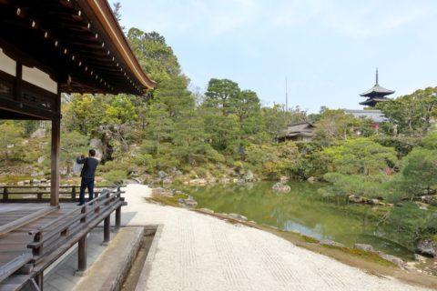 仁和寺/御殿の園庭