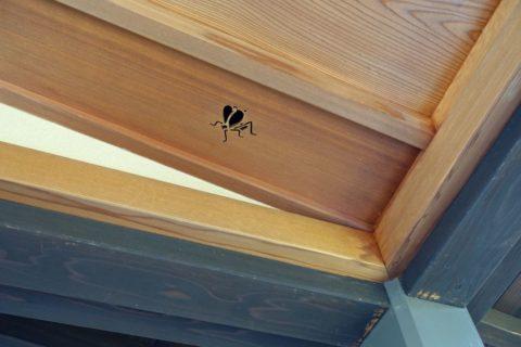 京都迎賓館/鈴虫