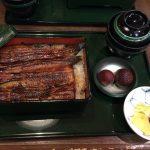 東京・神田【うなぎ】の老舗「神田きくかわ」で食レポ!