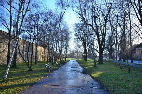プラハ ペトシーンの丘展望台 (2)