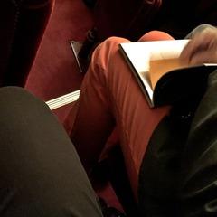 パリ国立オペラ座ガルニエ (16)