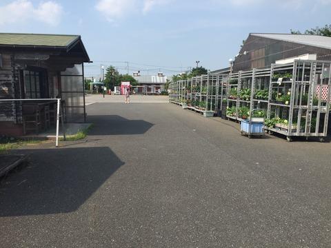 道の駅いちごの里よしみ (2)