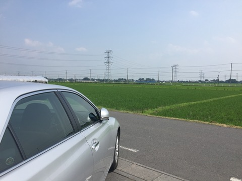 道の駅いちごの里よしみ (1)