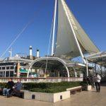 開業20周年!東京湾アクアライン海ほたるPA限定スイーツを試してみた!