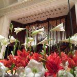 Winner's Concertを聴いて(ショパン国際ピアノコンクール2015)