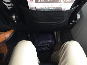 JAL sky next 普通席