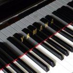 """クリスマス・ソング 《The Christmas Waltz》 をピアノで弾く! 今日はFrank Sinatraの""""生誕100周年"""""""